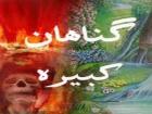 farhad hakimi