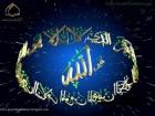 Zohaib_Shami
