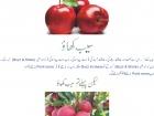 asghar6562