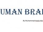 Awais Akram