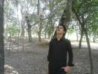 Hanif Prince Aryan Khan