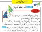 Syed Hassan Muavia