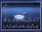 Muhammad Afsar