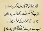 Shaheryar Aslam