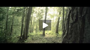 Lost In Whistler