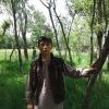 Ramin Habibzada