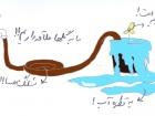 shahnaz haghighi