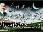 qamar shahzad
