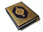 Muhammad Aleem