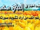 mohammadharoon