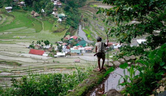 batad_rice_terraces_philippines