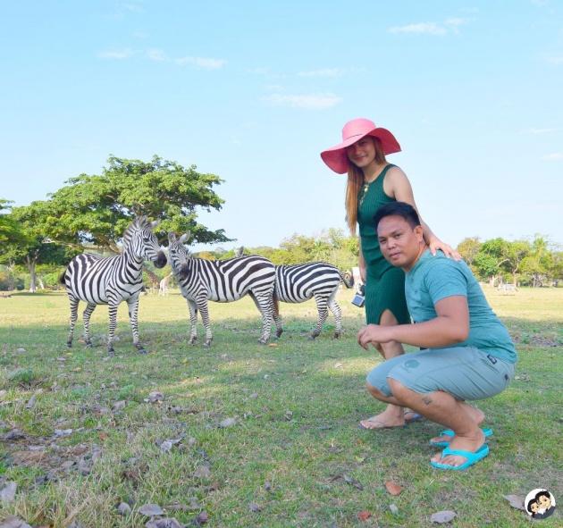 calauit_wildlife_safari_park