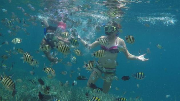 palawan_beach_resorts