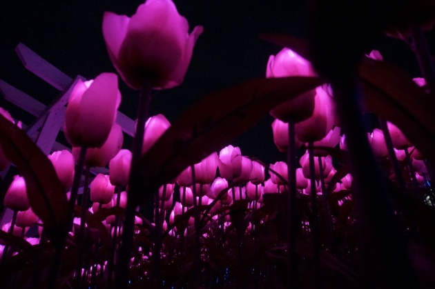 jardin_necitas_review
