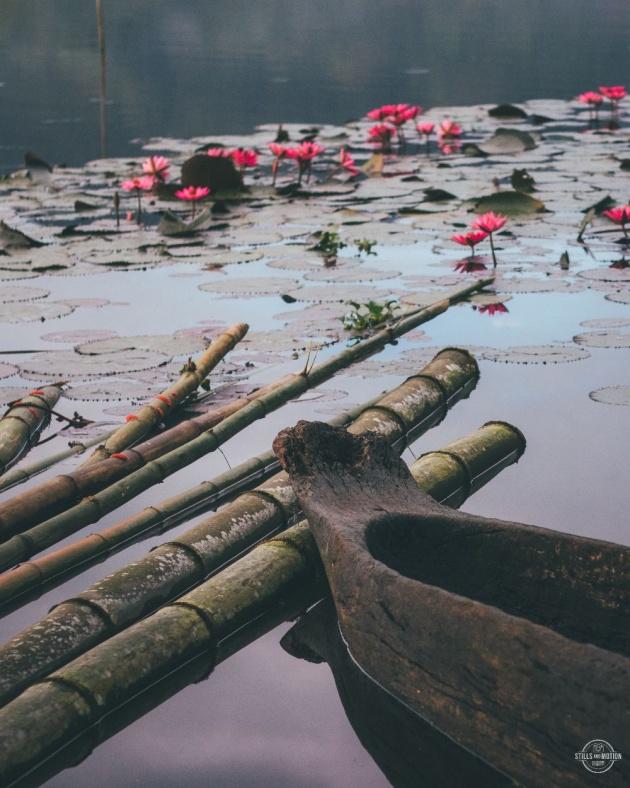 sunrise_garden_lake_resort_review