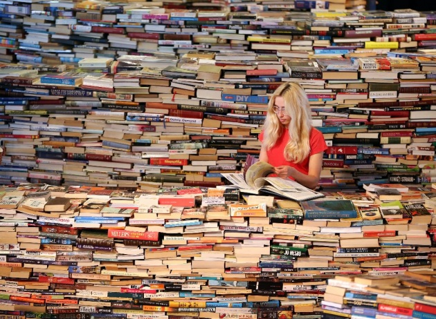 understading_the_mind_of_a_bookworm