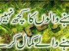 Shan Qasim Shani