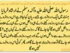 Syed Faraz Nasir