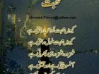 M Awais Mansha