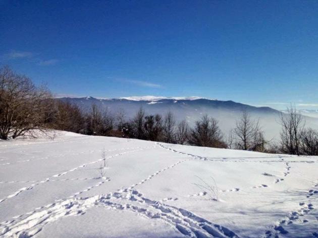 dupevitsa_peak_lyulin_mountain