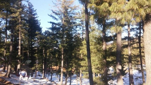 swat_valley