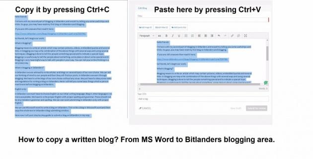 blogging_in_bitlanders