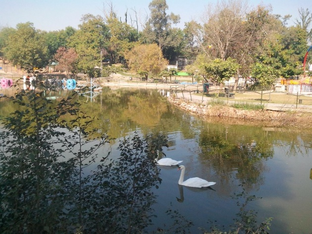 ayub_national_park