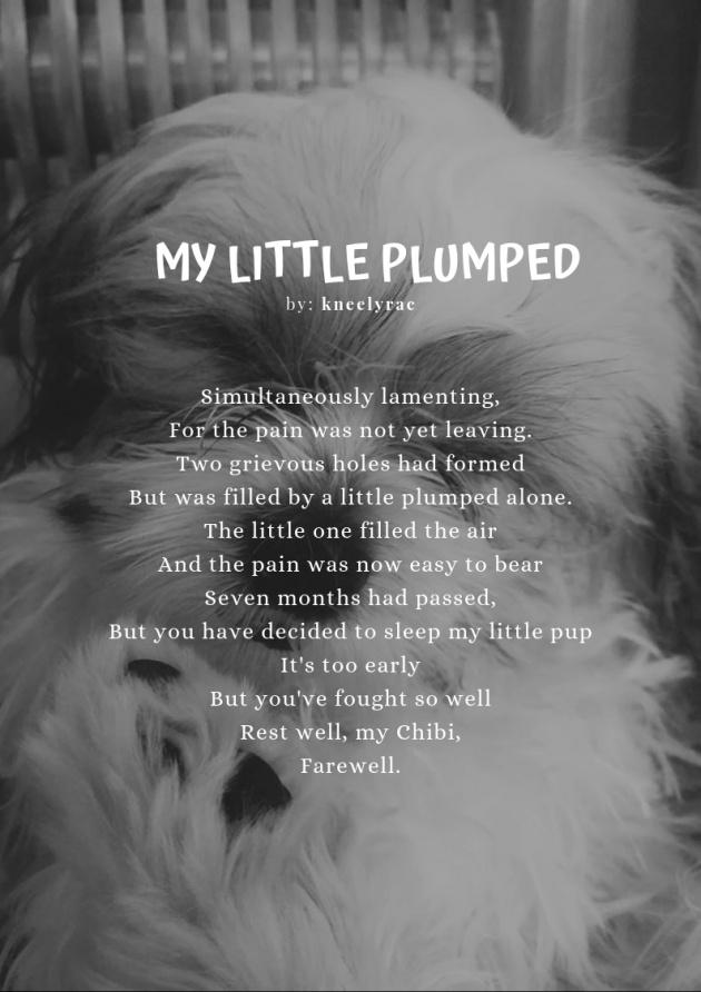 poetry_literature