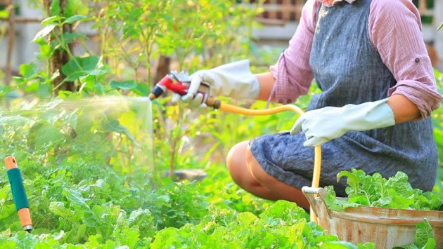 home_gardening