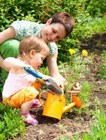 gardening_for_beginners