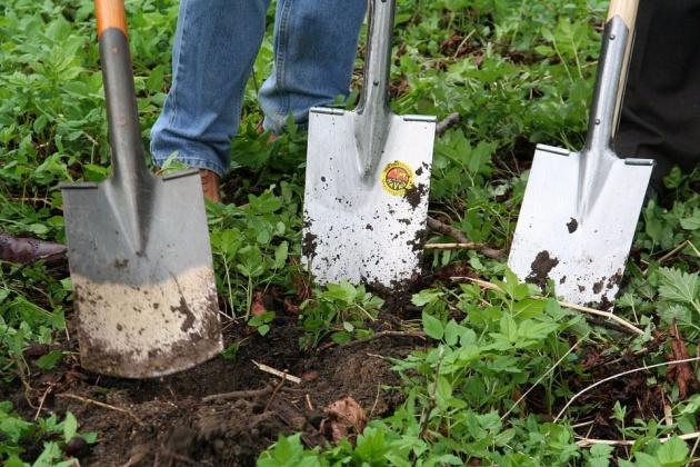 gardening_hand_tools