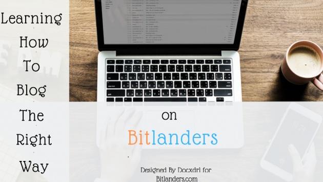 bitlanders_one_year_anniversary