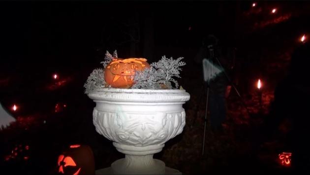 halloween_pumpkins_festival