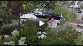 Miss Meadows 2014 English movie thriller