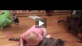 Cute Little Baby Playing with Kitten