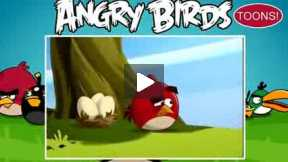 Angry birds,,,part-11
