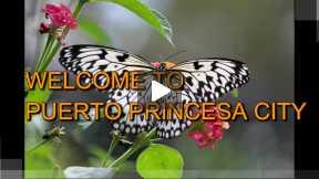 Explore Puerto Princesa City, Palawan