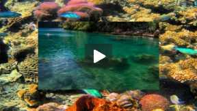Coron Island Palawan