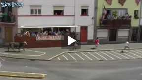 Funny video of Bull Fighting festival -8