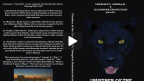 PANTHER OF THE STREETS -ENTER THE CAT