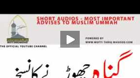 Most important advice for all muslim