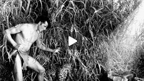The New Adventures of Tarzan - Chapter 1