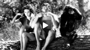 The New Adventures of Tarzan - Chapter 5
