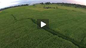 8. Aerial video