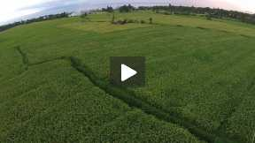 14. Aerial video