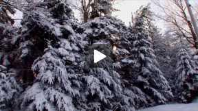 Xcorps  Music TV Presents - Wayne Olivieri - I Love Christmas Time - Winter Scenes
