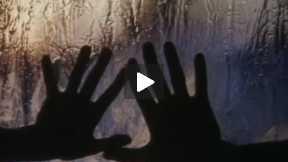 SIBERIAN LESSON Trailer