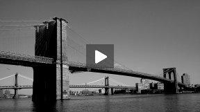 My Brooklyn Bridge