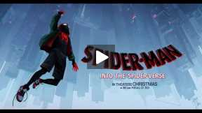 Spiderman Into The Spiderverse Review, Pokematic Podcast