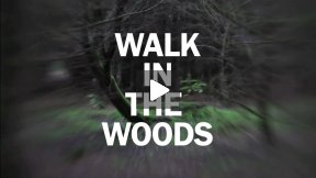 Walk in the Woods - by English Independent Filmmaker, Andy Parker